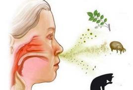 Скидка на прием аллерголога 20%